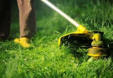 Image representing Improve grass cutting performance, contractors warned