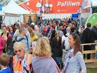 Image of the crowd at the Urdd