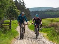 Image of two people on mountain bikes