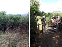 Before and after image of the footpath