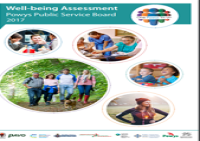 wellbeing assessment image