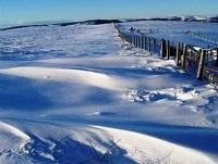 Image of fields covered in snow