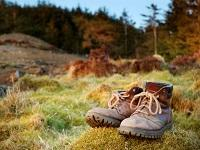 Image of walking boots in the countryside