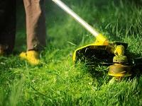 Image representing Grass cutting contract awarded to local companies